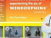 SITE ebay Windorphins