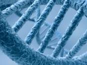 Découverte d'un nouveau gène associé schizophrénie