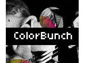 Zoom Colorbunch, portfolio Philipp Schilling