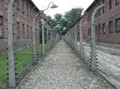 Auschwitz, lieu mémoire péril