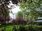 printemps dans square James Joyce (Paris 13e)