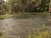 L'archipel Tuvalu, première victime réchauffement climatique