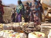 Point situation Somalie, Soudan, Tchad