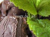 Sorbet Chocolat/Menthe pour KKVKVK