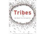 combat Marie-Hélène Dubé livre Tribes Seth Godin