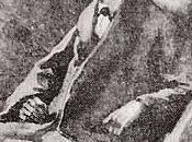 solution: Conan Doyle résurrection Sherlock Holmes