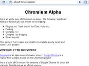 Installation Chronium, source Google Chrome
