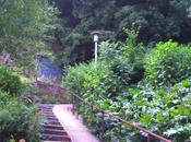 LYON: Jardin Chartreux