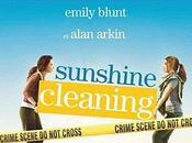 Sunshine cleaning Christine Jeffs