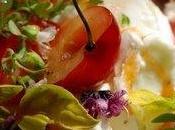 J'ai rendez-vous avec frigo retrouve dans potager… plus paresseuse salades tomates s'invite chez moi…