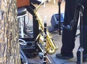 """""""Jazz Vienne"""""""