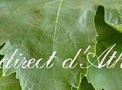 RETOUR MARCHE Conserver feuilles vigne toute l'année