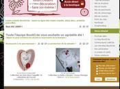 Bouticréa fait peau neuve nouveau site portail
