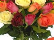 Vive fleurs avec promotions Aunomdelarose
