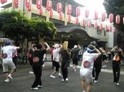 Matsuri academy