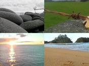 Photos Road-trip hivernal dans l'île