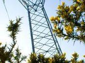 L'Observatoire l'énergie effet serre Bretagne publie premier bilan