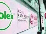 Molex emplois sauvés