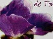 Violette Toulouse