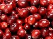 plein recettes base cranberries