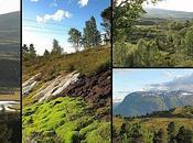 Destination vendredi Norvège