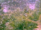pleine tempête