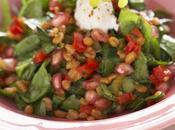 Petite salade craquante pousses d'épinards, épeautre, grenade poivron