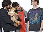 Animal Collective Fall Kind