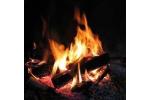 Réutiliser cendres cheminée