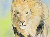 Lion crayons couleur
