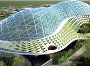 (Nature environnement) espace sauvegarde nature