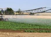 Agriculture réduction pesticides serait possible