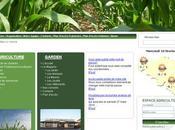 Mise ligne site Internet Centragro