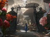 Alice, Wonderland