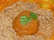 sorbet carotte coriandre, croustillant vermicelles salade carottes l'orange