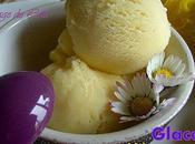 Glace Vanille Mimosa