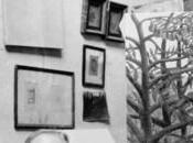 Douanier Rousseau Fondation Beyeler