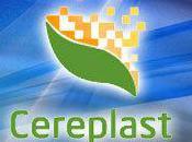 Bioplastique bourse Cereplast