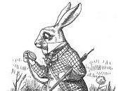 waiting white rabbit