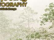 Magazine PhotographyBB Online N°27