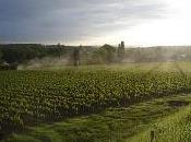 Première sicile corne 2010 avant pluie