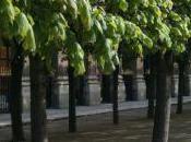 Jouer pétanque Paris Jardin Palais Royal
