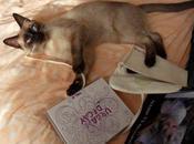 chat curieux...