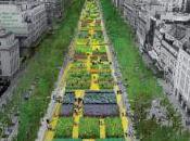 Parisien(ne)s, mettez-vous vert avec Nature Capitale