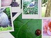 jardins Viels-Maisons.
