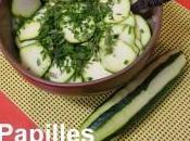 Salade crue courgettes concombre