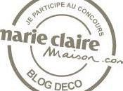 Votez pour blog Concours Marie Claire Maison decodesign Décoration