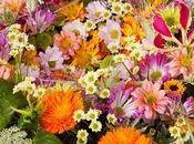 Bouquets fleurs d'été,