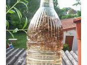 Macérât Vinaigré Lavande Assouplissant Anti-calcaire pour Linge