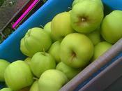 pommes, mais pomzannies...